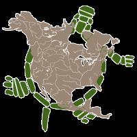 turtule_logo_500px_PNG